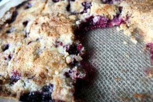 Blackberry Crumble Dump Cake 4