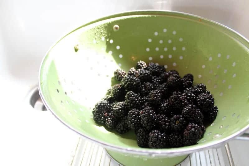 Roasted Pork Tenderloin with Blackberry Merlot Sauce - Blackberry Babe