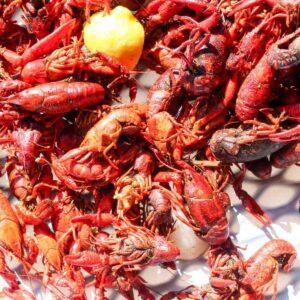 Authentic Louisiana Crawfish Boil
