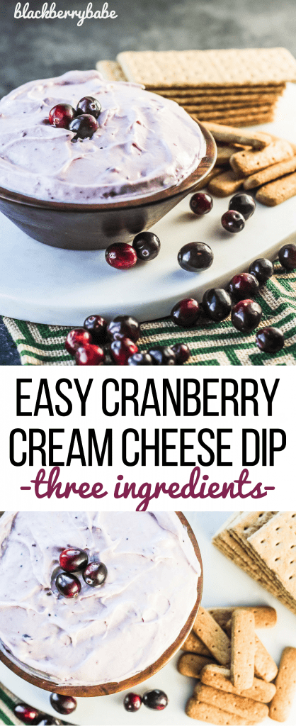 Easy Cranberry Cream Cheese Dip, just three easy ingredients! Perfect appetizer for Thanksgiving or Christmas!