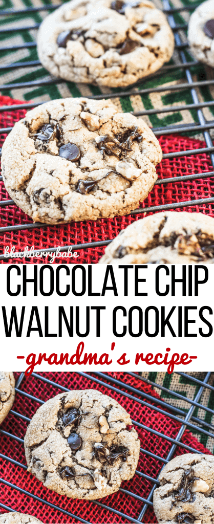Chocolate Chip Walnut Cookies