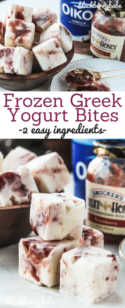 Frozen Greek Yogurt Bites | High Protein Snack | High Protein Ice Cream |